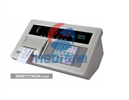 XK3190-A9称重专用仪表